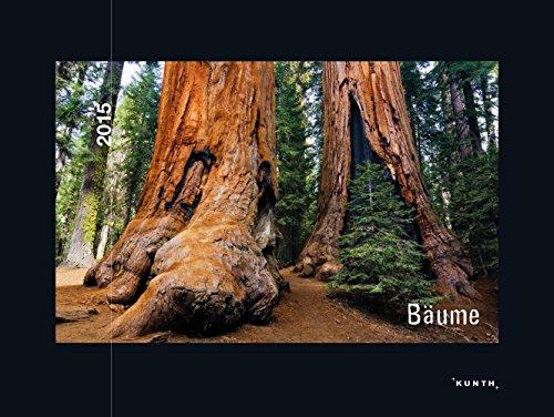 KUNTH Kalender Bäume 2015