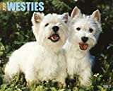 Just Westies 2012 Calendar (Just (Willow Creek))