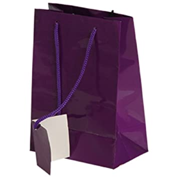on wholesale on feet shots of hot sale online Dozen Small Purple Gift Bags With Tags