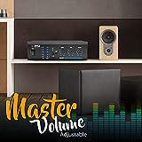 Bluetooth Audio Speaker Power Amplifier - Portable