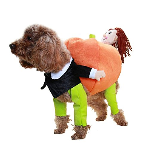 [Pet Apparel Pumpkin Boy Fleece Dog Coat Dog Costume Clothes (M)] (Disguise Costumes For Turkey)