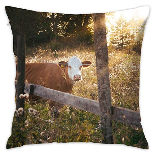 (Linxher Cow in Farm Animal Decorative Throw Pillow Modern Square Form Stuffer for Couch Sofa Or Bed Set Cozy Home Decor 16