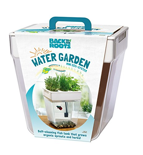 Back to the Roots Water Garden Betta Fish Tank, 3 Gallon. Hydroponics Growing System. Fish tank with Organic Aquaponic Sprouts and Herbs Aquarium Starter Kit. Great for Kids by Back to the Roots (Image #5)