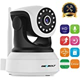 Wireless WiFi IP Security Camera - GENBOLT Dog Camera GB102S (2018 New Design) Night Vision Pan Tilt CCTV Spy Camera 720P indoor for Home Surveillance, Two Way Audio Motion Detection Baby Monitor