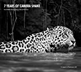 Best Camera For Bird Photographies - 7 Years of Camera Shake: One Man's Passion Review