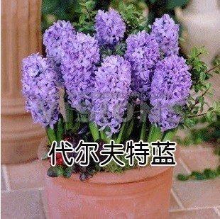 Uberlegen VISTARIC Yellow: Lndlich Stil Zakka Keramik Tpfe Pflanz Auspicious Frchte  Knstliche Blumen Bonsai Simulation Grne