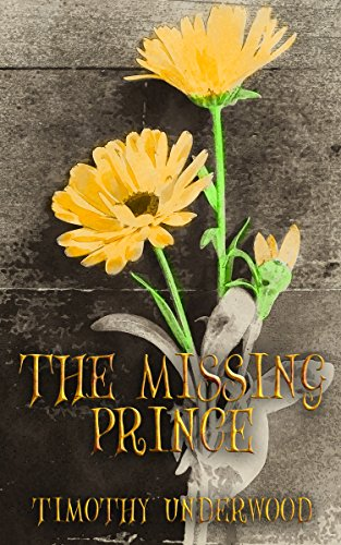 The Missing Prince An Elizabeth And Darcy Story Kindle Edition By
