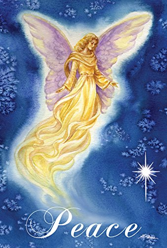 Toland Home Garden Angel Wings 28 x 40 Inch Decorative Inspirational Religious Peace House Flag