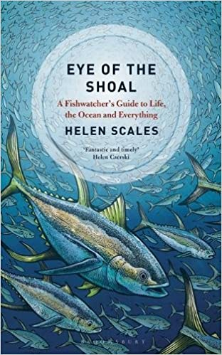 Eye Of The Shoal A Fishwatchers Guide To Life Ocean And Everything Helen Scales 9781472936813 Amazon Books
