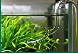 JARDLI Glass Lily Pipe Outflow for Aquarium Planted