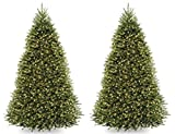 National Tree 9 Foot Dunhill Fir Tree with 900 Clear Lights, Hinged (DUH-90LO) (2 TREES)