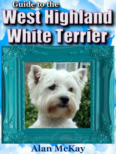 Guide to the West Highland White Terrier