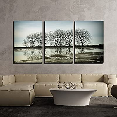 Classic Artwork, Majestic Artisanship, Tree Reflection in a Pond Vancouver Bc Canada x3 Panels