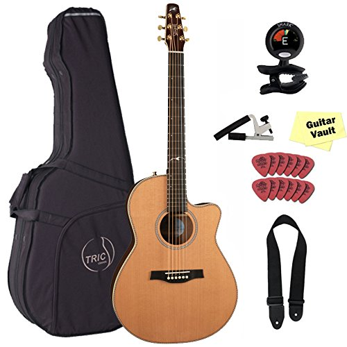 Seagull Artist Mosaic CW Folk Element Acoustic-Electric Guitar with Deluxe TRIC Case and Accessory Pack