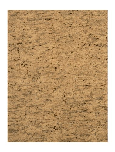 (York Wallcoverings RN1028 Modern Rustic Sueded Cork Wallpaper)