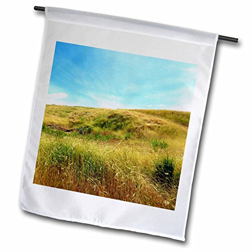 3dRose Jos Fauxtographee- Meadow on a Hill - A golden Meadow going up a hill in green and golden tones - 12 x 18 inch Garden Flag - Utah Hill Field