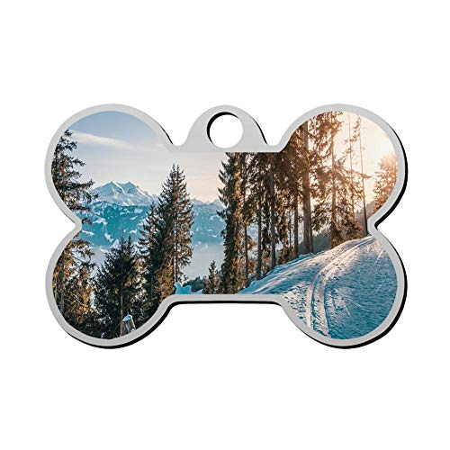 RLDPY Custom Pet Id Tags, Personalized Print Bone Shape Dog Tags & Cat Tags Cross-Country Skiing (Best Gps For Skiing)