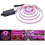 Lahoku LED Plant Grow Strip Light 16.4feet Full Spectrum SMD 5050 Red Blue 4:1 Rope Light with Power Adapter for Greenhouse Hydroponic Plant (5M)