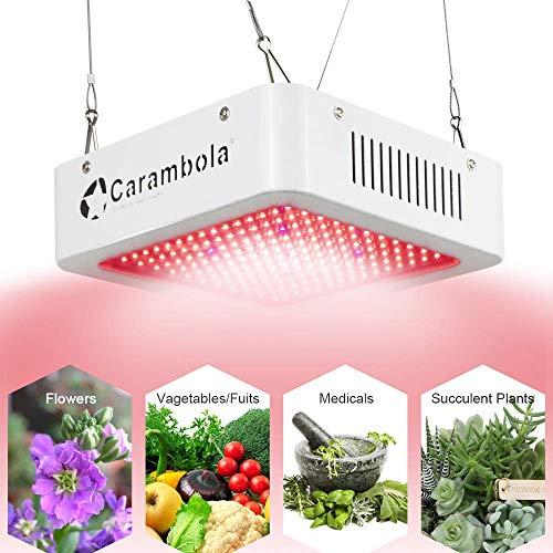 1200w LED Grow Light for Flower Blooming LED Plant Grow Lamp Full Spectrum for Indoor Plants Veg and Flower (1200W)