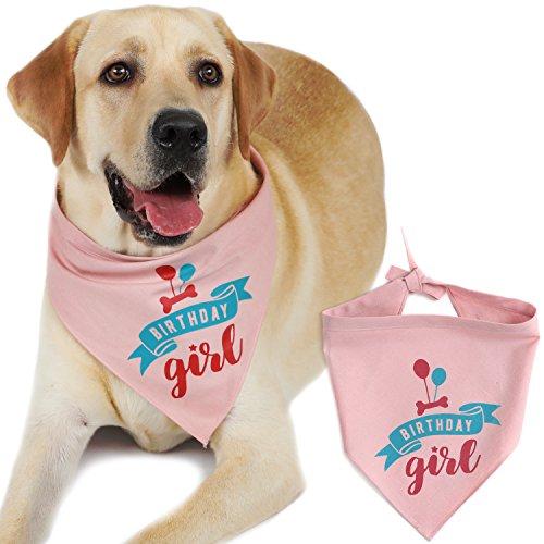 JOYLOADER Dog Birthday Bandana Girl - Dog Birthday Party Supplies - Birthday Girl Dog Bandana - Ideal Birthday Gift Idea for Pet - Happy Birthday Puppy