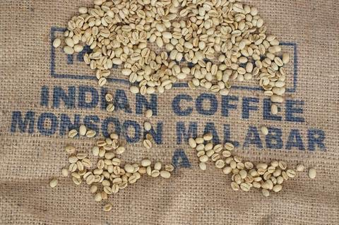 Timrow Traders Unroasted Green Coffee Beans - Indian Monsoon - 10 LB