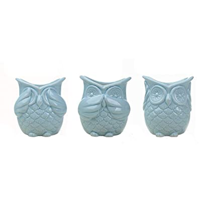 Set of 3 Modern Blue owl Ceramic Succulent Planter Pots/Mini Flower Plant Containers : Garden & Outdoor