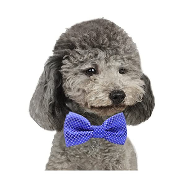 YOY Handcrafted Adorable Pet Bow Ties – 6-Pack Adjustable Neck Tie 11.4″-18.5″ Polka Dots Bowties Dog Collar Neckties Kitty Puppy Grooming Accessories for Doggy Cat, 6 Colors Click on image for further info. 6