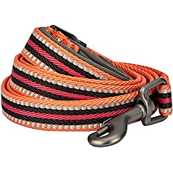 """Blueberry Pet 8 Colors 3M Reflective Multi-Colored Stripe Dog Leash with Soft & Comfortable Handle, 5 ft x 3/4"""", Orange & Black, Medium, Leashes for Dogs"""