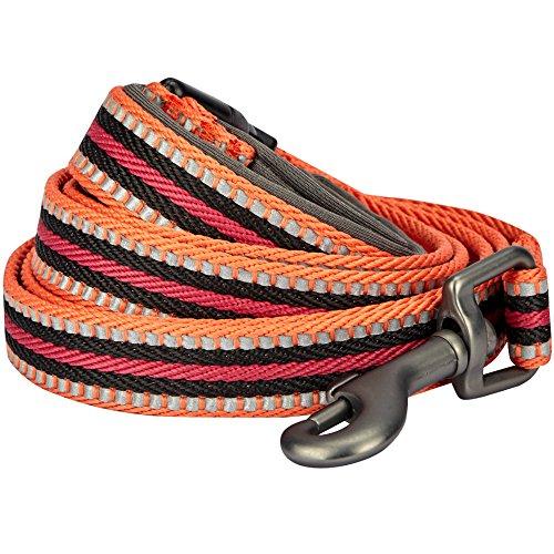 Blueberry Pet 8 Colors 3M Reflective Multi-Colored Stripe Dog Leash Soft & Comfortable Handle, 5 ft x 3/4