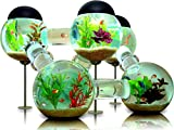 makeuseof Water plants Cool Tropical Fish Tank Animals Home Decoration Canvas Poster Larger Image