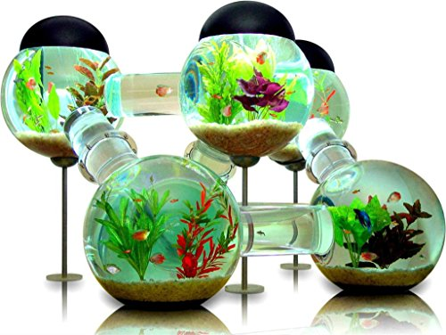 makeuseof Water plants Cool Tropical Fish Tank Animals Home Decoration Canvas Poster