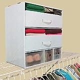 Luxury Living 12'' Deep Multi-Use Closet Storage Organizer