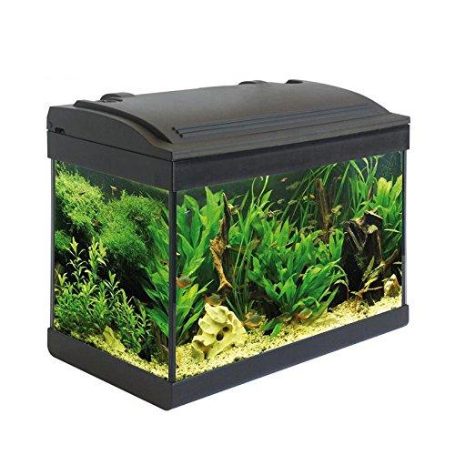 Opinioni per acquario milo accessoriato 43x24x36cm 25 litri for Depuratore per acquario tartarughe