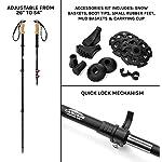 Cascade Mountain Tech Aluminum Adjustable Trekking Poles 2 Pack – Lightweight Quick Lock Walking or Hiking Stick – 1 Pair