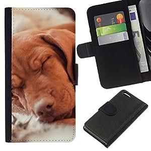 EJOY---La carpeta del tirón la caja de cuero de alta calidad de la PU Caso protector / Apple Iphone 5C / --Vizsla Golden Retriever Perro Familia del perro