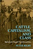 Cattle, Capitalism and Class : Ilparakuyo Maasai Transformations, Rigby, Peter, 1566392047