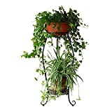 Dazone Demountable Metal 2 Tiers Plant Rack Indoor Floor Model Potted Plant Stand (Black)