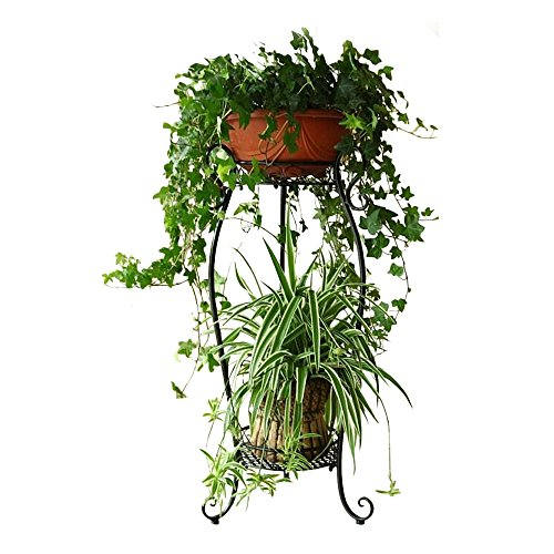 DAZONE Demountable Metal 2 Tiers Plant Stand Indoor Floor Tall Plant Rack (Black)