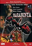 marabunta / Legion of Fire: Killer Ants! (Dvd) Italian Import