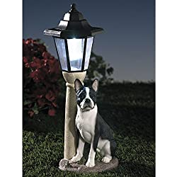 Bits and Pieces-Solar Boston Terrier Lantern-Solar Powered Garden Lantern - Resin Dog Sculpture With LED Light