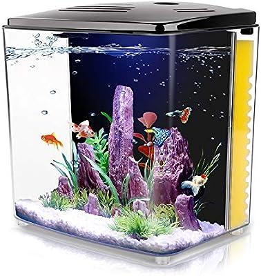 1 4 Gallon Aquarium Starter Kits Aquariums Square Betta Fish Tank With Led Light And Filter Pump Amazon Sg Home