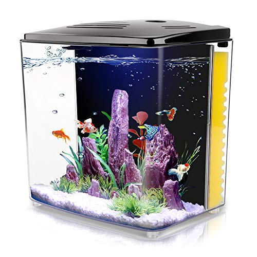 FREESEA 1.4 Gallon Aquarium Starter Kits, Aquariums Square Betta Fish Tank with LED Light and Filter Pump