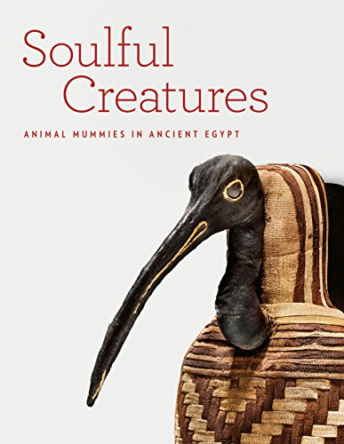 Soulful Creatures: Animal Mummies in Ancient Egypt (Animal Mummies)