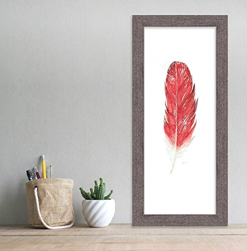 Cardinal Feather - Cardinal Feather Art. West Virginia State Bird Fine Art Print