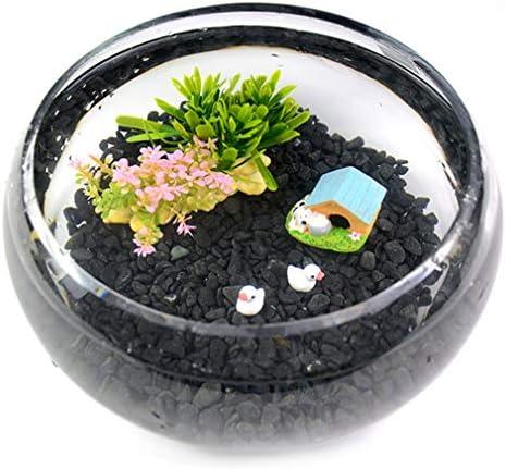水族館水槽水族館を開く卓上ガラス水槽生態学的な小さな観賞用水槽造園装飾