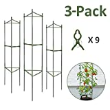 GROWNEER 3-Pack Plant Cages Assembled Tomato Garden Cages Stakes Vegetable Trellis, w/ 9Pcs Clips, for Vertical Climbing Plants