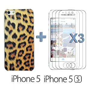 OnlineBestDigital - Carving Design Patterns Plastic Case for Apple iPhone 5S / Apple iPhone 5 - Style M with 3 Screen Protectors