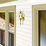 Design House 502526 Jackson 1 Light