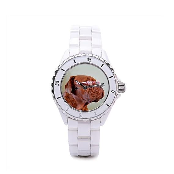 Queensland cerámica relojes Adorable comprar relojes en línea Pedigree: Amazon.es: Relojes