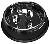 QT Dog Stainless Steel Brake-Fast Bowl, Large